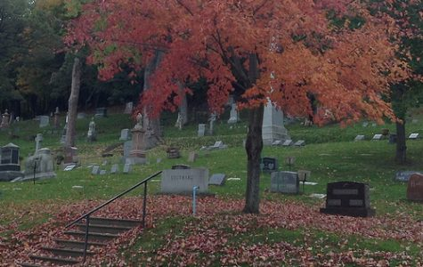Woodlawn Cemetery is home to more than 22,000 graves.  SAMANTHA STETZER