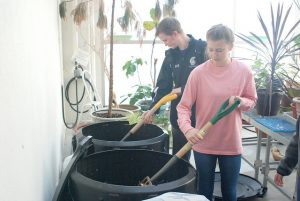 Senior Andrew Halverson and sophomore Alyson Fisher mix compost in bins located in the greenhouse of third floor Pasteur Hall. The bins are part of their class' project to leave a legacy at Winona State University. (Photo by Allison Mueller)