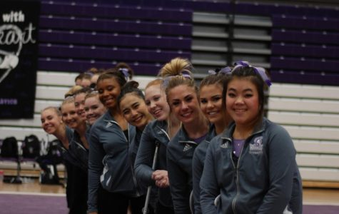 Seniors shine at final home meet