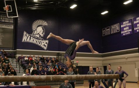 Gymnastics shines as regionals approach