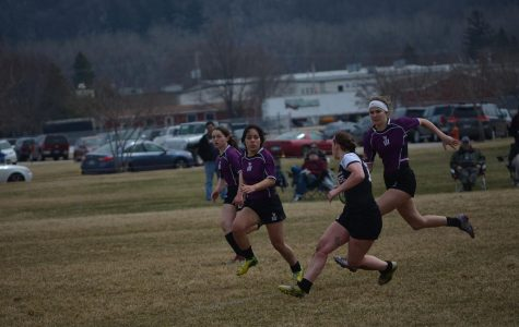 Rugby finishes spring season undefeated