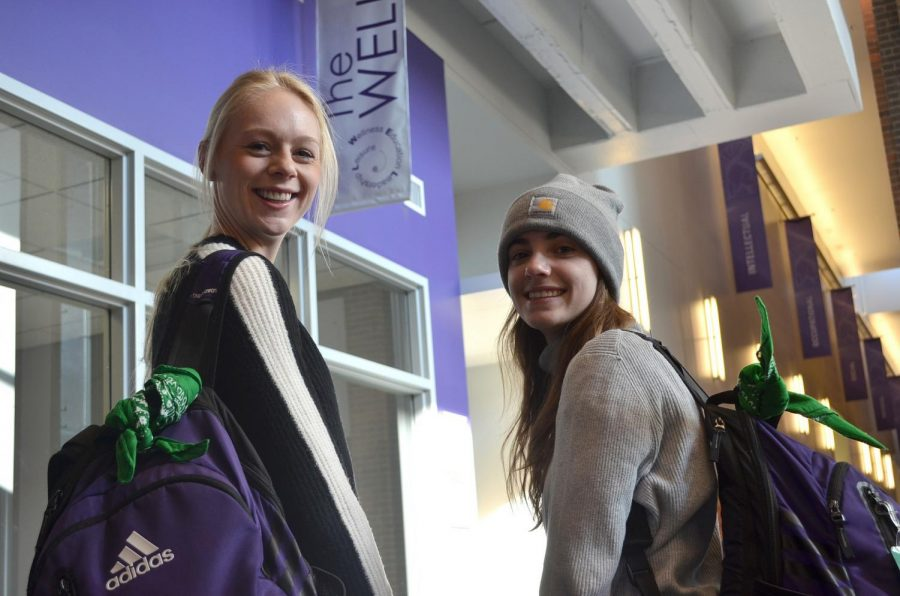 Senior Kari Schneiss and junior Taylor Juresh are the founders of the Winona State chapter of the Green Bandana Project, a national program that brings awareness to mental health issues. Information about the project can be found in The WELL and on the Winona State website.
