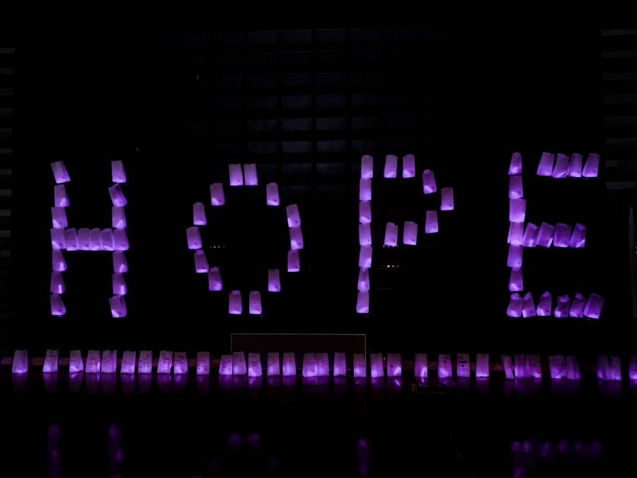 Relay for Life: a story in photos