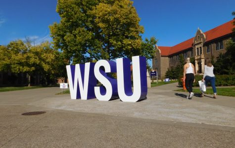 "The new ""WSU"" letters were placed in the center of campus outside Phelps Hall at the end of September. They can be found right next to the gazebo in the middle of campus."