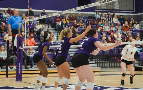 Volleyball continues to playoffs