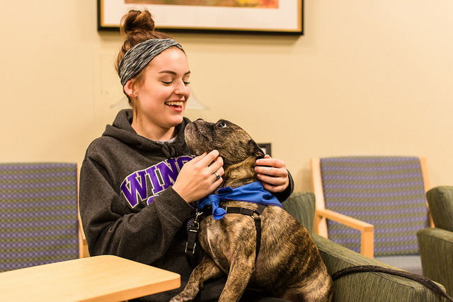 Lynda Brzezinski is the campus counselor and professor who facilitates the Pet A Therapy Dog event, held every Wednesday, 3:30-4:30 p.m. through Oct. 27. The event was virtual last year, but returned to an in-person format this semester with extra precautions.