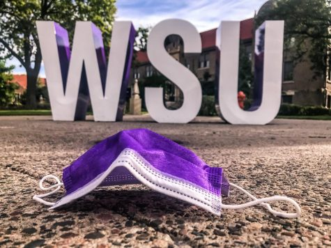 Disposable masks, for example, became an issue at Winona State. Some people litter disposable masks across campus, polluting the planet and even endangering animals.